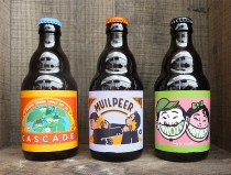 photo-3-bouteilles-dugudus-beer-design-illustration